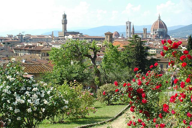 Roses garden Florence